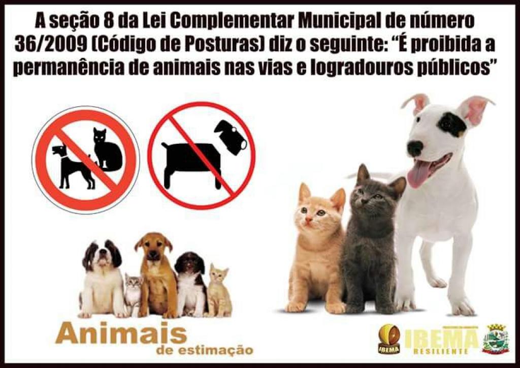 Ibema notifica donos de animais domésticos