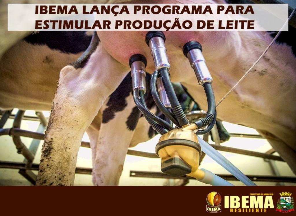 Ibema lança programa para estimular produção de leite